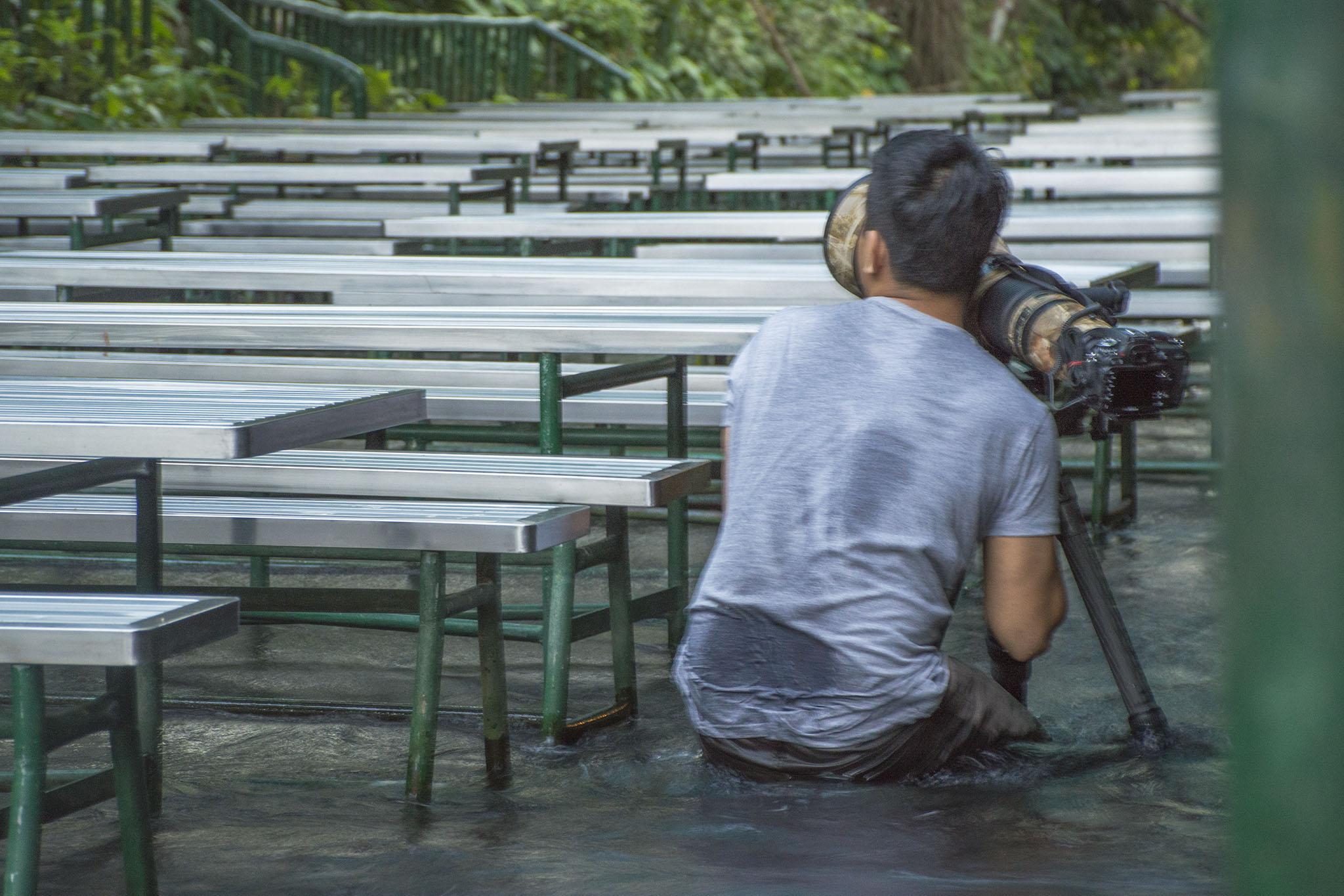 Nikon 600mm VR nano Villa Escudero